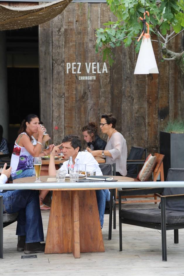 Pez Vela6