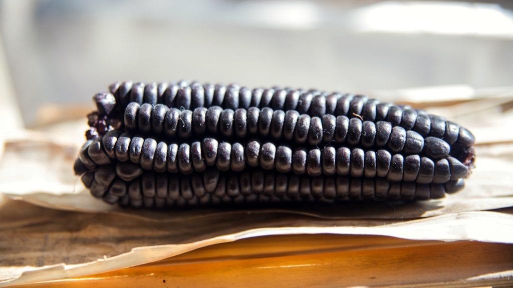 Plateselector - Maiz morado del Restaurante Quina de Valencia